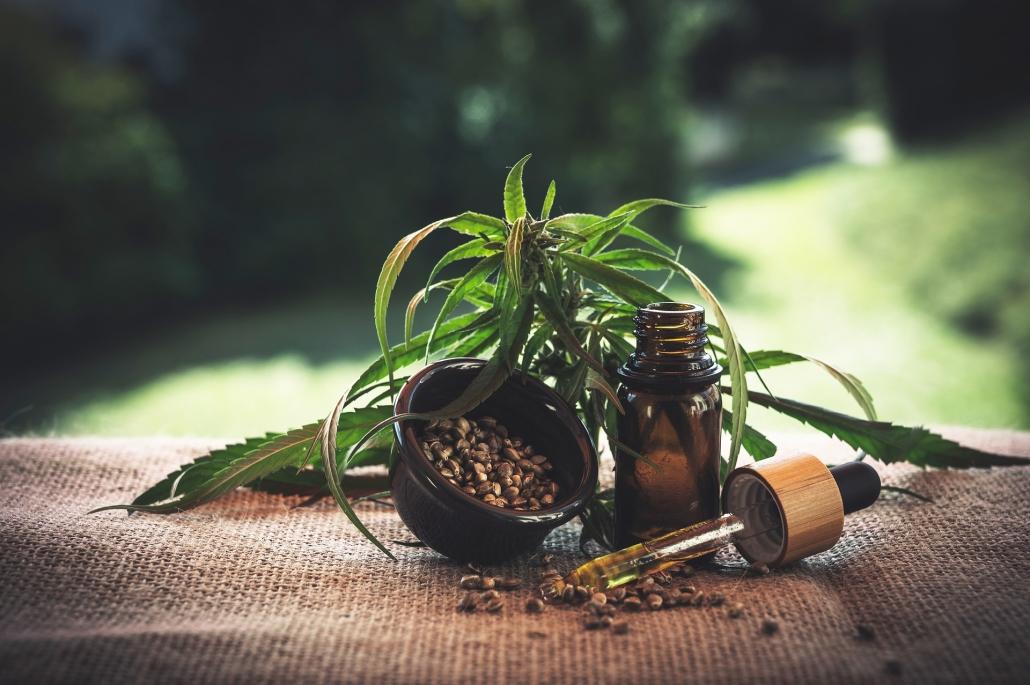 CBD Öl Anwendung, ein Glas CBD Öl mit einem Schälchien Bohnen und einer Hanfpflanze im Hintergrund
