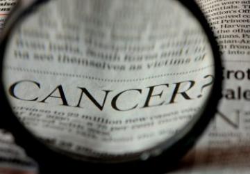 CBD gegen Krebs