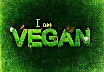 Vegetarische Kochbox – die schnelle gesunde, frische, praktische und vegetarische Mahlzeiten